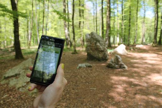 Géocaching en forêt de Fougères©Office de tourisme du Pays de Fougères
