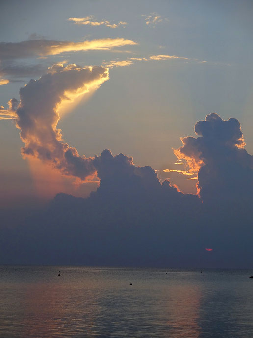 5月14日をきっかけに、わたしの中で何かムクムクと大きなものが、ほんとうにやりたかったことが湧き上がって来ています!・・・まるで、しっぽがぐぐぐ~っと立ち上がってくるように♥(この写真は、昨夏沖縄ブセナビーチでのサンセット・ヨガでの落日ショット。きつね?にわとり?の尾っぽのようだと思いました)
