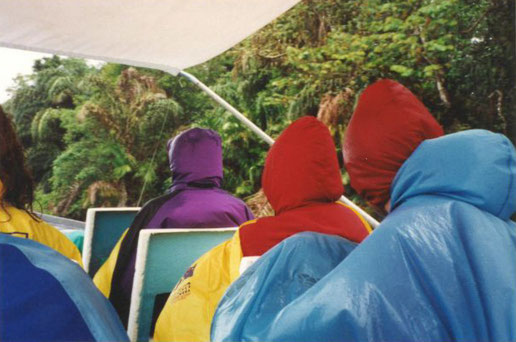 Eine etwas ins Wasser gefallene Tour durch den Garten Eden im Tortuguero-Nationalpark