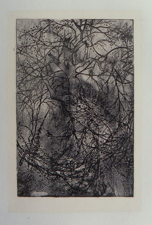 Rodolphe Bresdin, Branchages, eau-forte, 10,5 x 6,9