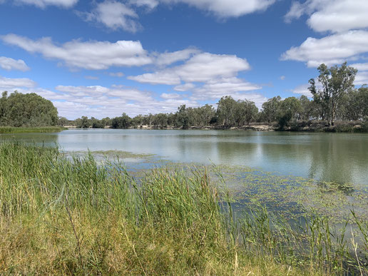 Australia's iconic Murray River