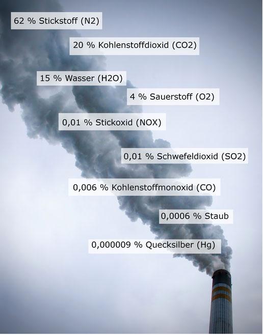 Emissionen des Kraftwerks Schkopau: 62% Stickstoff, 20% Kohlenstoffdioxid, 15% Wasser, 4% Sauerstoff, 0,01% Stickoxid, unter 0,00% Kohlenstoffmonoxid, unter 0,00% Staub, unter 0,00% Quecksilber