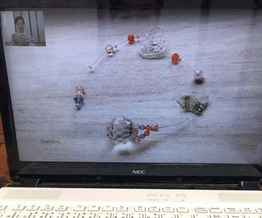 お客様のパソコンを使用してのWEB映像は実寸大に近いので臨場感ありますね