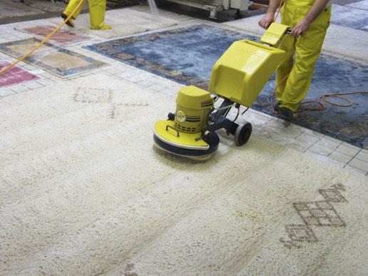 Teppichreinigung-mueden.de, Leistungen, Bild Teppiche werden mit Einscheibenmaschine gereinigt