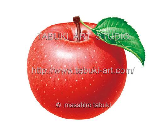 青リンゴのイラスト apple