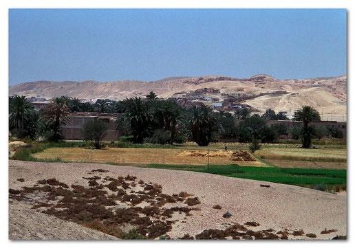 Wo bewässert wird, hört die Wüste auf