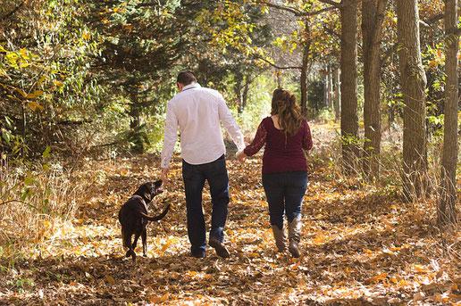 Wozu einen Hundeführerschein ablegen