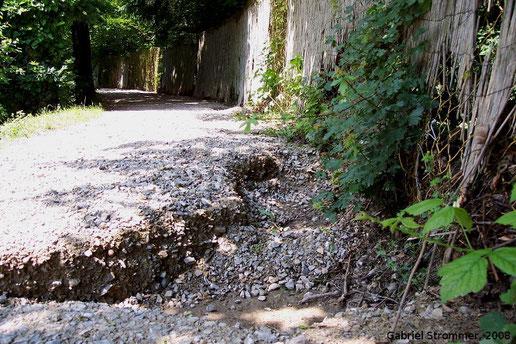 Am 4. Juni 2008 durch den Gütenbach beschädigter Zaun und Radweg entlang der Reichen Liesing (Kalksburg)