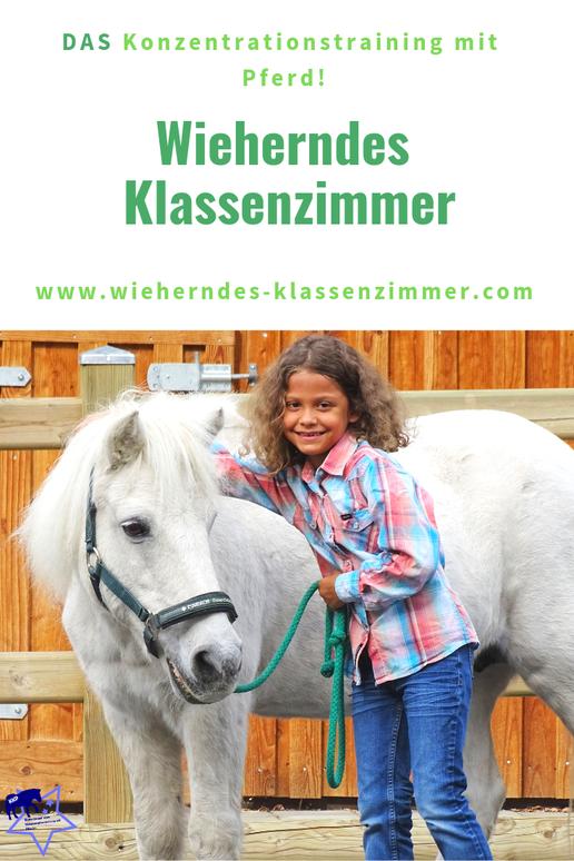 Wieherndes Klassenzimmer - mit KKP zum Lernerfolg! DAS Konzentrationstraining mit Pferd für Kinder von der ersten bis zur vierten Schulklasse!