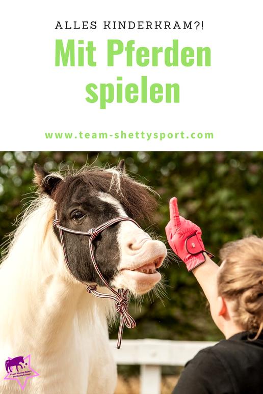 Mit Pferden spielen - Lernspiele für Pferde