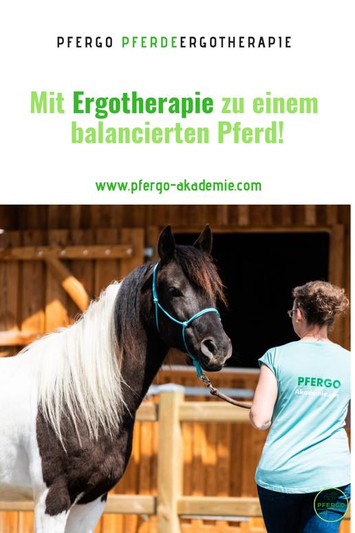 PFERGO - Pferdeergotherapie: Mit Ergotherapie zu einem balancierten und ausgeglichenen Pferd!