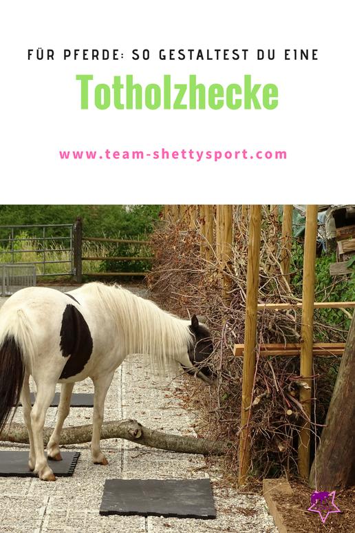 Offenstall von Skandwood, Offenstallideen zur artgerechten Pferdehaltung, Totholzhecke