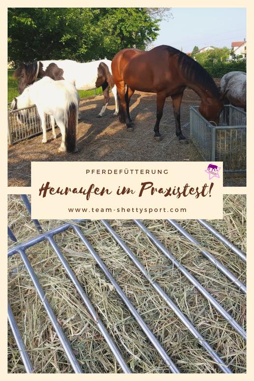 Heuraufen für Pferde im Praxistest: Diese Heuraufe ermöglicht eine natürliche Fresshaltung beim Pferd.