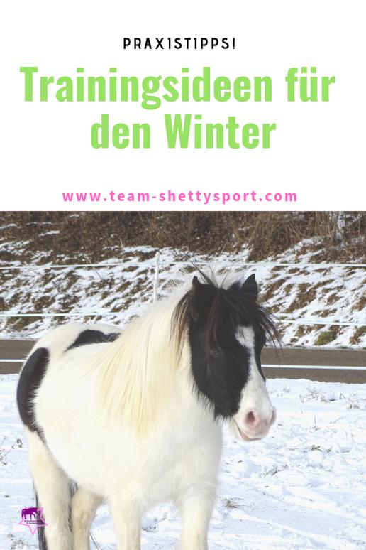 Training im Winter! Mit diesen Trainingsideen bleibt Dein  Pferd auch im Winter fit.
