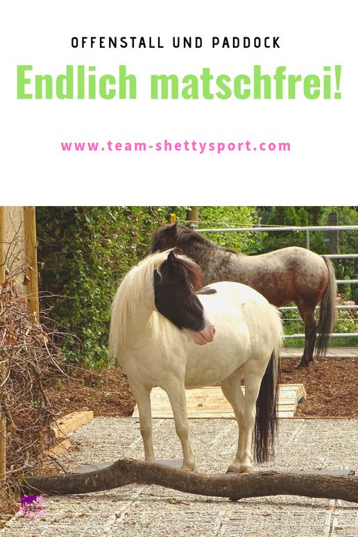 Offenstall, Paddock und Trailwege matschfrei gestalten! So gelingt die Bodenbefestigung - damit die Pferde trocken stehen können.