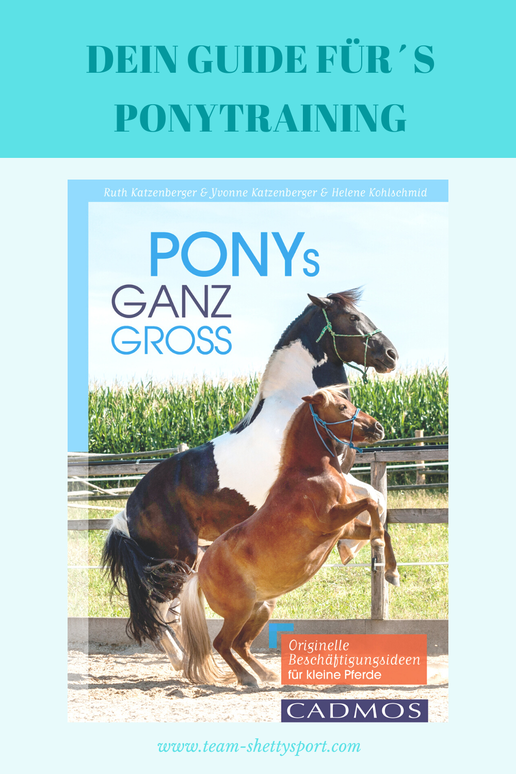Ponys ganz groß: Originelle Beschäftigungsideen für kleine Pferde ist DAS Buch rund um´s Training von Ponys.