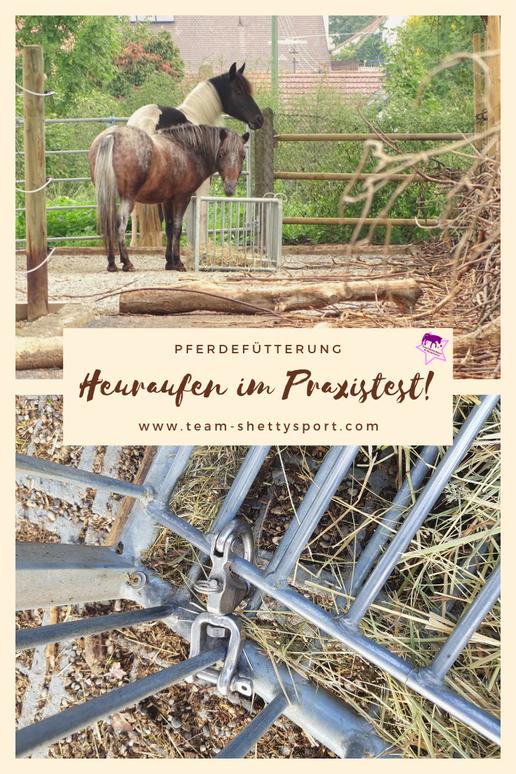 Heuraufen für Pferde im Praxistest: Unsere Großraumheuraufe, an der mehrere Pferde gleichzeitig fressen können.