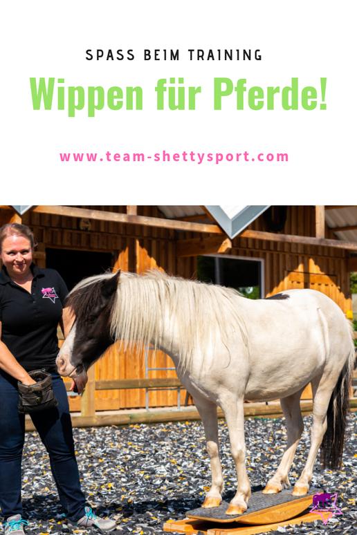 Team Shetty-Sport. Pferdewippe.