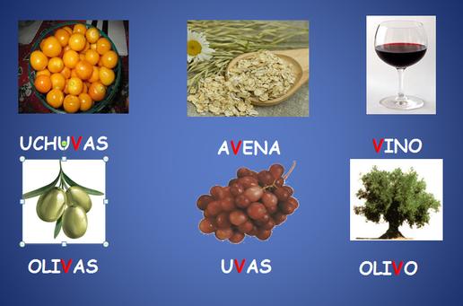 Alimentos Vistos En Clase Página Jimdo De Experiencias Educativas