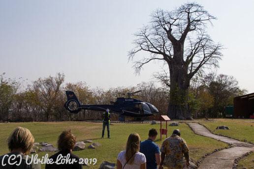 Helipad auf Baobab Ridge