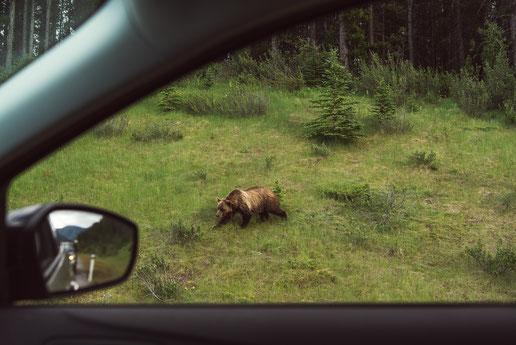 Banff Nationalpark (C) Johan Lolos
