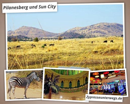 Südafrika: Pilanesberg und Sun City