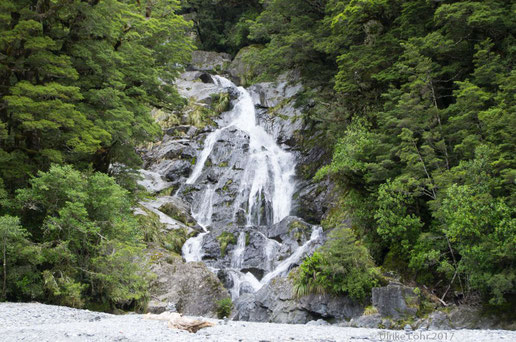 Fantail Falls am Haast Highway