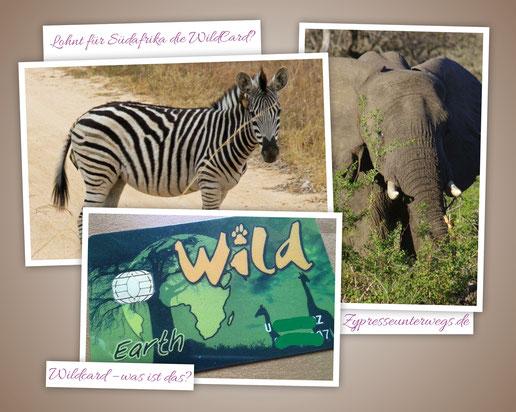 Lohnt für die Südafrika Reise eine Wildcard? {Werbung ohne Auftrag}