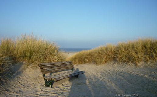 Einsame Strandbank auf Langeoog