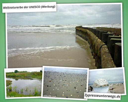 Wangerooge im Wattenmeer - Weltnaturerbe der UNESCO {Werbung}