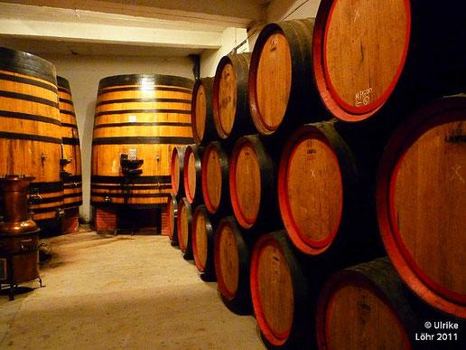 Weinfässer (nicht in Spanien, bei Cazes in Frankreich)