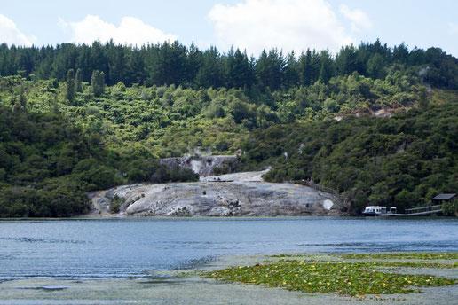 Blick auf Orakei Korako auf Neuseelands Nordinsel