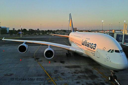"""Lufthansa Airbus A380-800 """"Düsseldorf"""" in Johannesburg"""