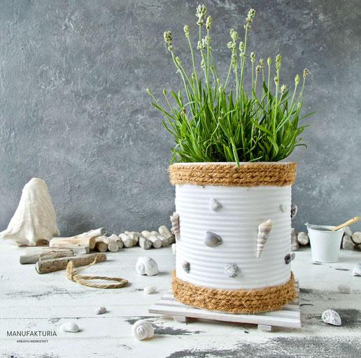 Weisse Konservendose maritim beklebt mit Muscheln und Seil als Blumentopf für Lavendel