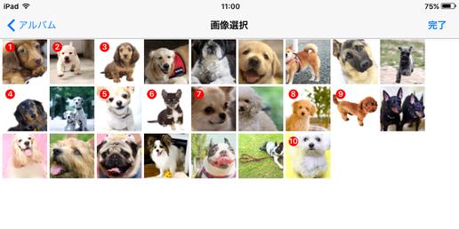 スマートフォンアプリ,写真管理,画像管理,写真,画像,フォトちゃん,画像1