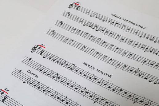 アイリッシュ音楽 ケルト音楽 教則本 楽譜