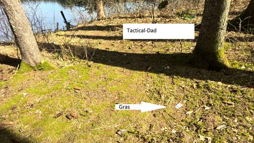 Genau an dem Tag als die Rabenvogel Schonzeit begann suchte ich mir andere Beschäftigungen und fand mal wieder Gras an einem beliebten Ausfugsziel.