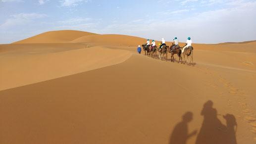 360度どの方向を見渡しても「砂漠」です