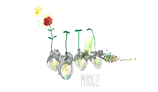 """Illustration  """"Miracle"""" von Johanna Leitner"""