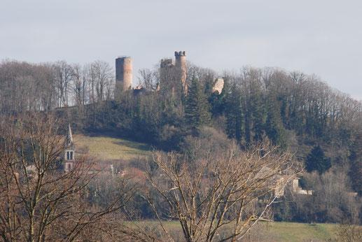 Château et village de Bressieux
