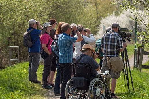 Die Teilnehmer verfolgen gespannt das Treiben auf dem Jungferweiher (Foto: Rea Brinkhoff)