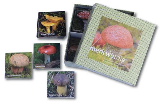 Verpackung des Gedächtnisspieles zu einheimischen Pilzen. Bildkärtchen mit Abbildungen: Echter Pfifferling, Speitäubling, Maronenröhrling, Satansröhrling