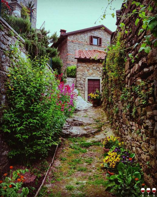 Raggiolo. Itinerari di Vino. Foto Blog Etesiaca