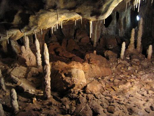 Réplica de La Garma. Sector IV de la Cueva de la Garma. Para el Museo Arqueológico de Cantabria.