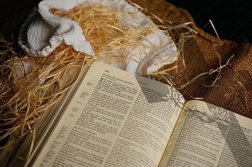 """La naissance de Jésus est très peu relatée dans la Bible. Les Evangiles de Jean et de Marc n'en parlent pas du tout et l'Evangile de Matthieu dit que « Jésus naquit à Bethléhem en Judée"""". Seul l'Evangile de Luc donne des détails sur la naissance de Jésus."""