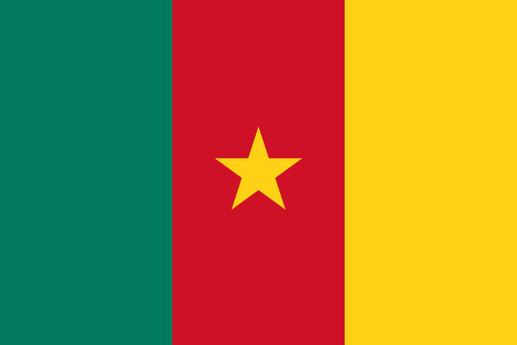 Le nouveau drapeau du Cameroun. Les dexu étoiles sur la bande verte ont disparu. Il n'y en aura plus qu'une au centre de la bande rouge.