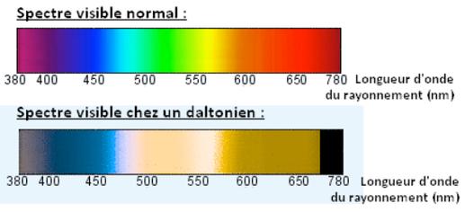 En haut : spectre des couleurs vues par une personne à vision normale. En bas: spectre vu par John Dalton. Source : internet.