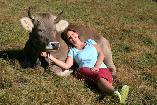 Braunviehkuh, Weide, Kuh, Horn