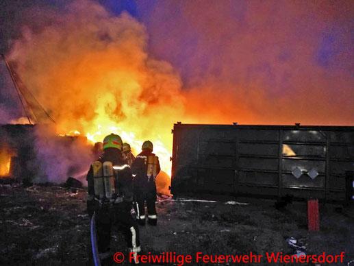 Feuerwehr; Blaulicht; BFKDO Baden; FF Wienersdorf; FF Oeynhausen; Firmengelände; Brand;