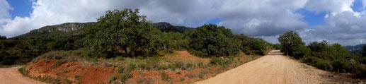 Rocha da Pena - Bergwandergebiet-  nahe der  Ortschaft Alte